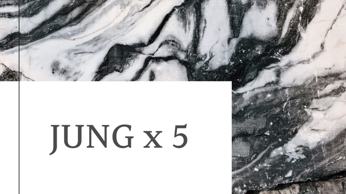 Read more about the article JUNG x5